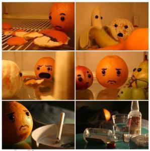 El naranjo engañado